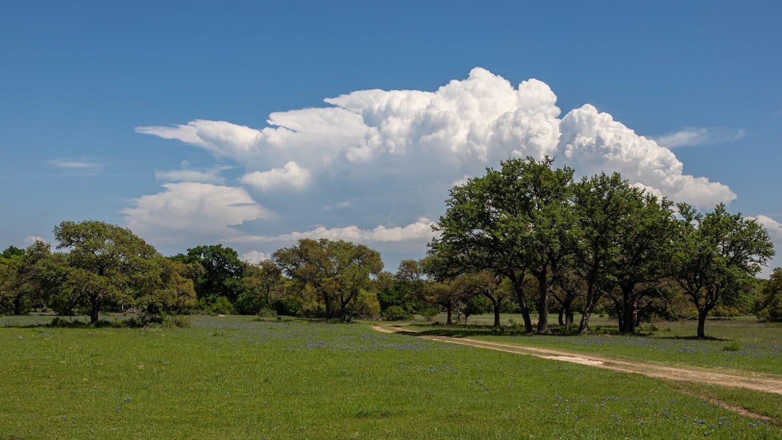 Summit Estates at Fischer landscape